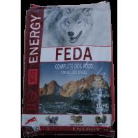 FEDA ENERGY