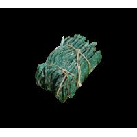 Biocont Typhlodromus pyri - roztoč k ochraně révy vinné a ovocných sadů proti sviluškám, halčivci, vlnovníkovci